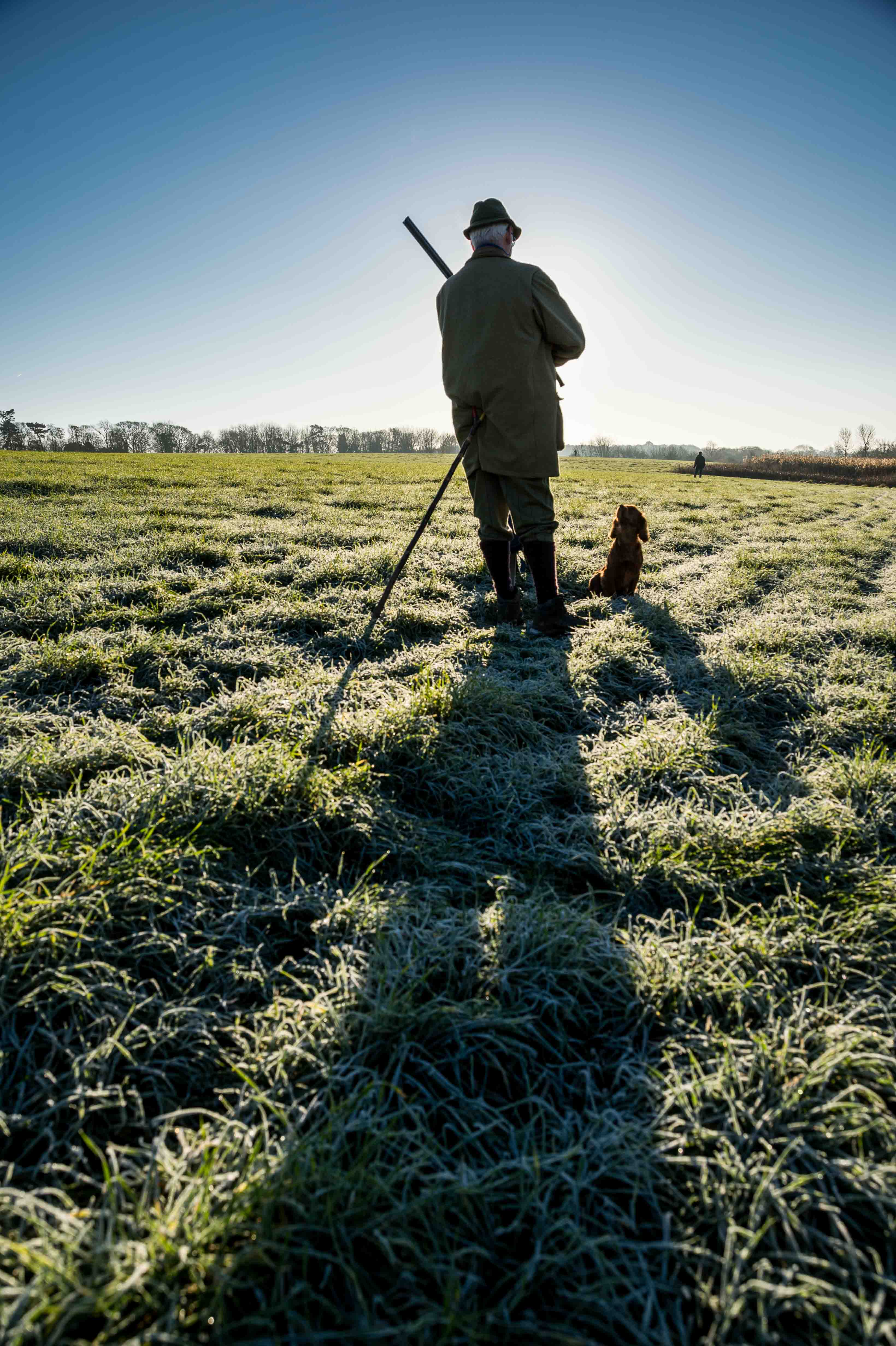 Fieldsports Stock Photography