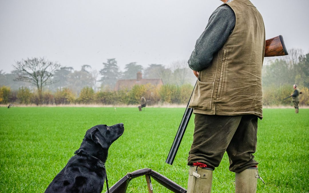 One Man And His Gundog